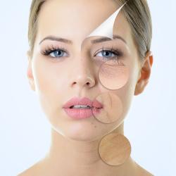 Anàlisis facial i capilar
