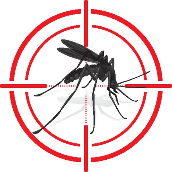 Cómo escoger el mejor repelente de mosquitos