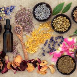 Fitoterapia, homeopatía y terapias naturales alternativas