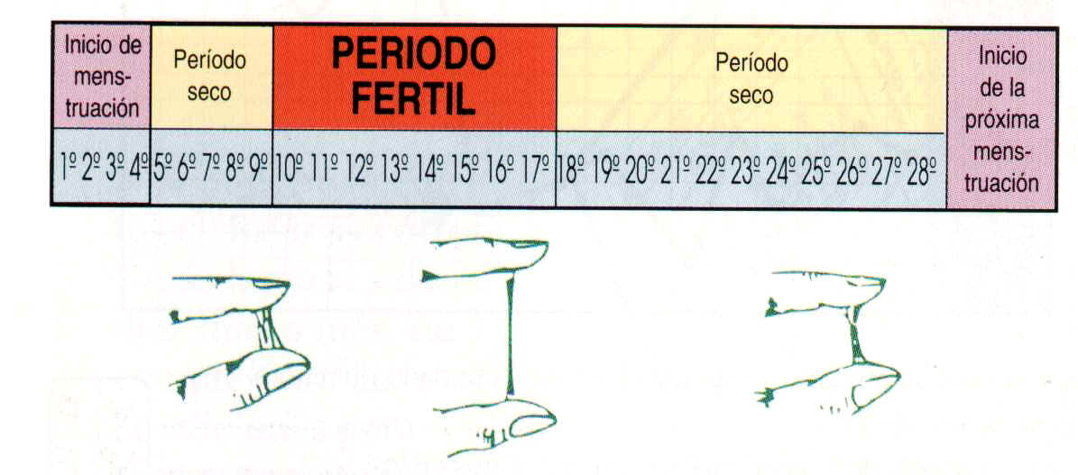 Métodos naturales de control de natalidad. Pros y contras