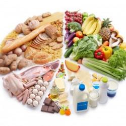 Asesoramiento Nutricional – Método Dieta activa