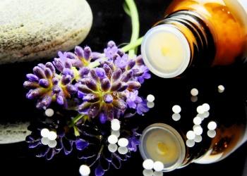 Plantas medicinales / fitoterapia