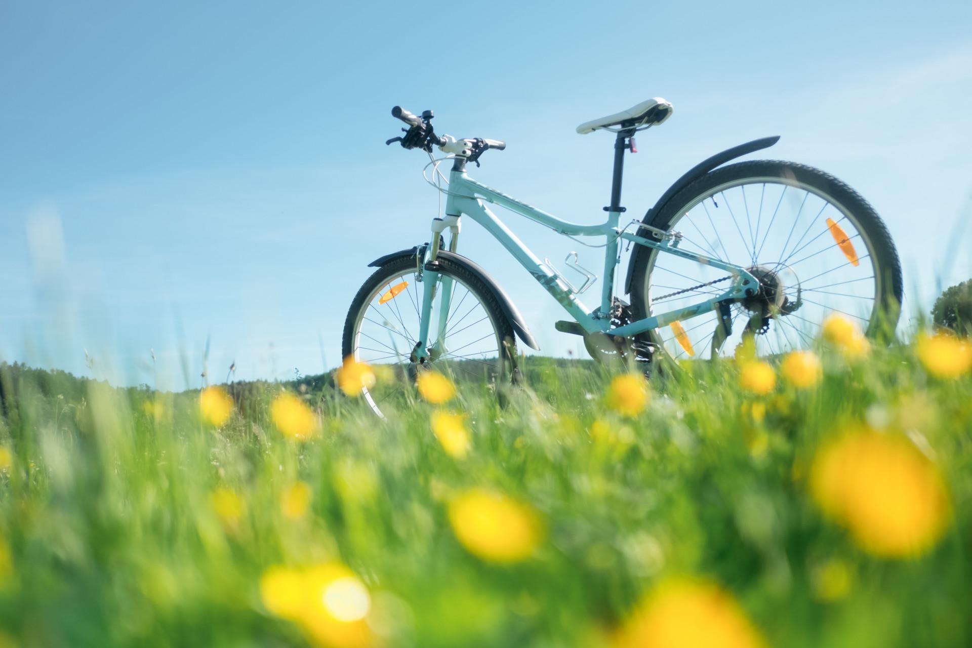 La importancia del colágeno para la práctica de ciclismo