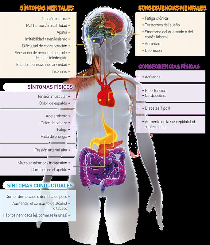 ansiedad que es y sintomas de diabetes