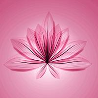 Test menopausia