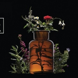 Cosmètica natural i Bio