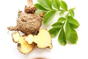 Control de pes, la ajuda de les plantes