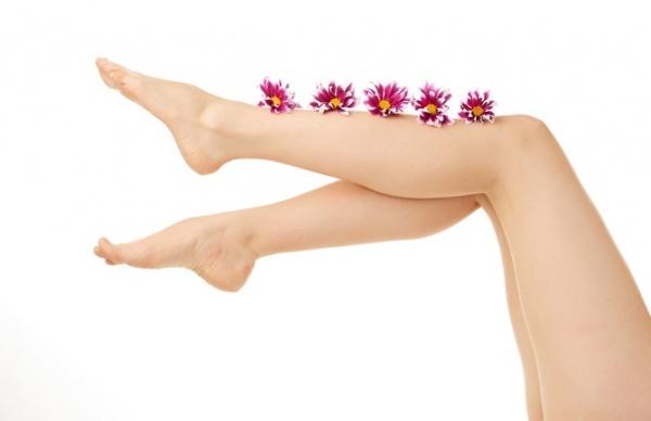 6 plantas medicinales para aliviar las piernas cansadas