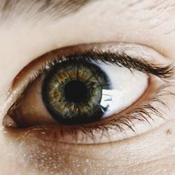 Estudi del estat de la còrnea i/o del fons de l'ull (retina)
