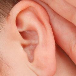 Perforación oreja