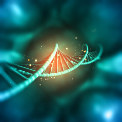 Test Epigenético